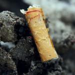 Уменьшать курение – бессмысленно